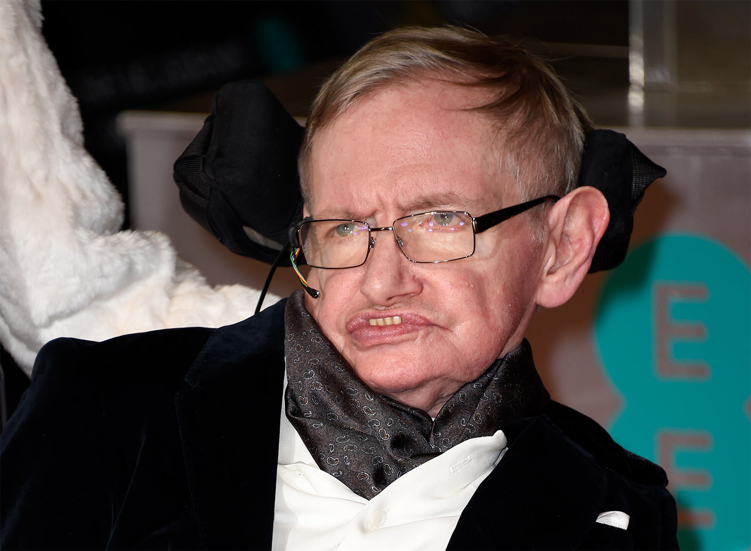 Stephen Hawking Has A Pretty Grim Prediction For The Future Of Humanity UNILAD hawking 314