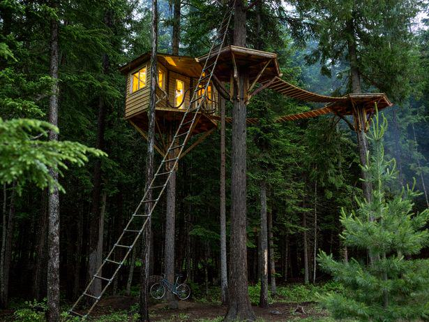 These Amazing Cabins Will Make You Want To Quit Your Job And Move UNILAD treehouse12