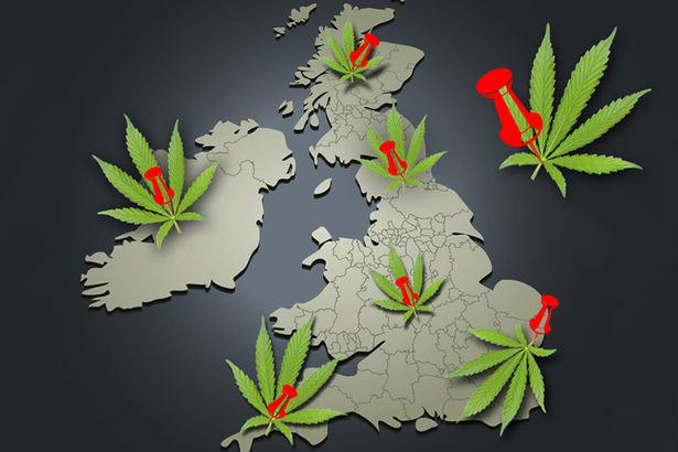 No Surprises Which UK Area Wants To Legalise Cannabis UNILAD weed116
