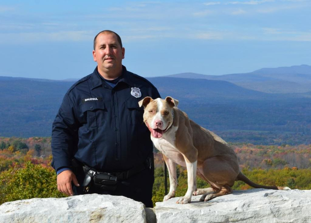 History Made As Rescue Dog Becomes First Ever NYPD K9 Pit Bull UNILAD 232320
