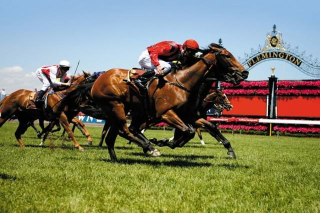 The Melbourne Cup: Australias Most Prestigious Horse Race Is Back UNILAD Melbourne cup68198 640x426