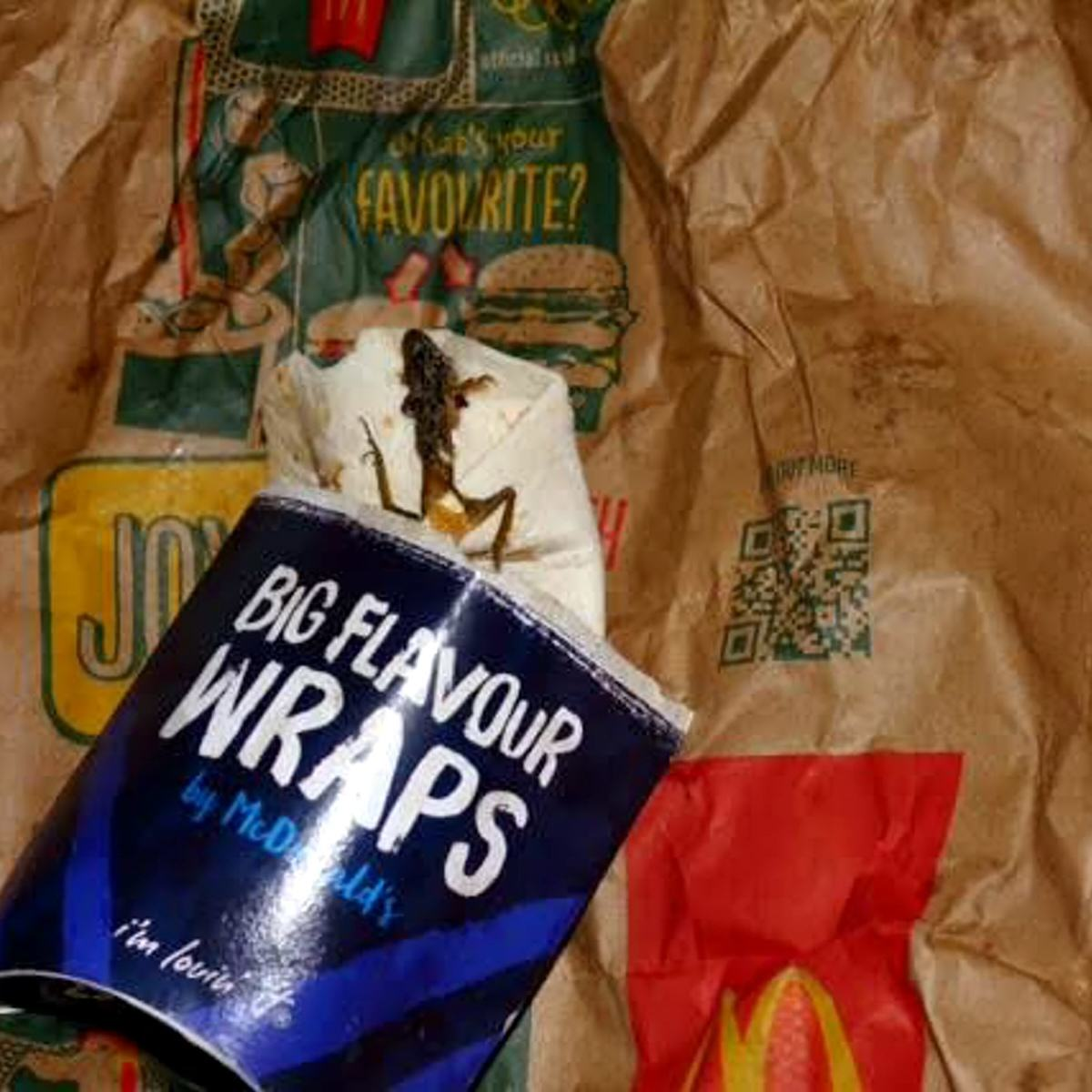 Seven Truly Disgusting Things People Found In Their Food In 2015 UNILAD SWNS MCDONALDS FROG 0347271