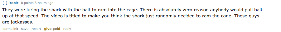 Divers Narrowly Avoid Great White Shark That Smashes Into Their Cage UNILAD Screen Shot 2015 11 09 at 00.52.2114875