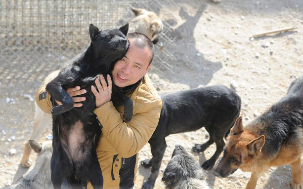 Millionaire Goes Broke Saving Hundreds Of Dogs From Slaughterhouse UNILAD Screen Shot 2015 11 20 at 10.29.3498751