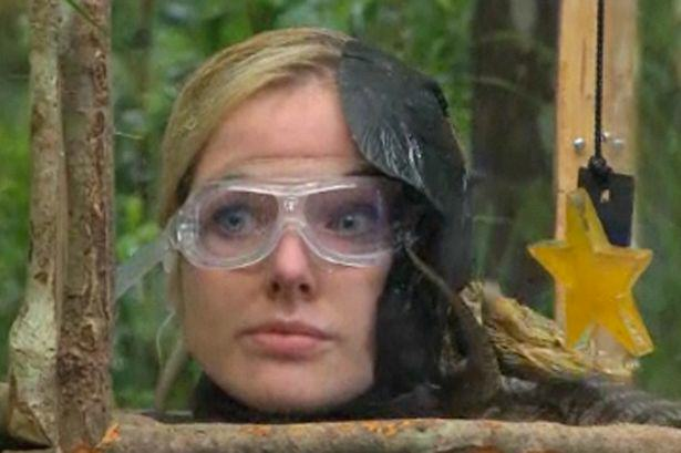 Five Reasons Im A Celeb Needs To Get In The Fucking Bin UNILAD bushtucker160151