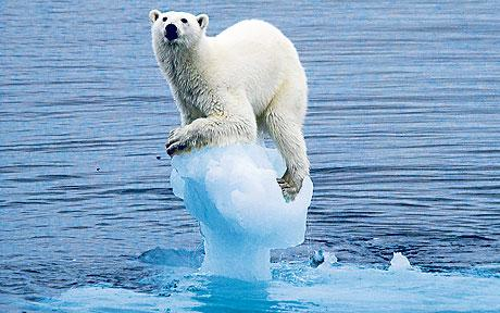 World Halfway Towards Threshold That Could Result In Dangerous Climate Change UNILAD climate change 1509200c6418