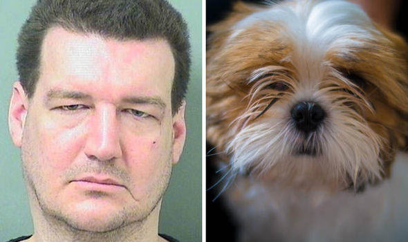 Man Bites Dog And Ends Up In Jail, Obviously From Florida UNILAD de13316