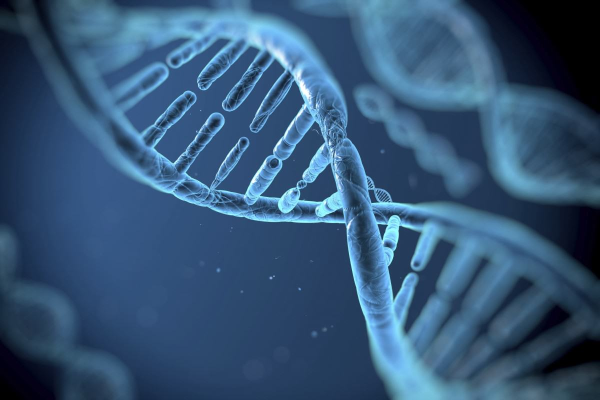 Heres Why Most Of Us Are Right Handed UNILAD dna genes 140593277623124 1200x800