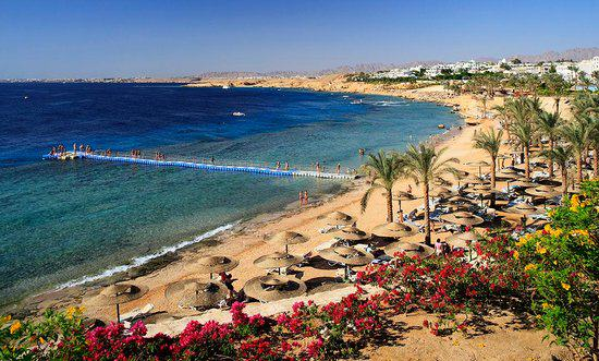 Global Terror Threat Means Brave Travellers Can Find Some Holiday Bargains sharm el sheikh 4CornersTrip Advisor