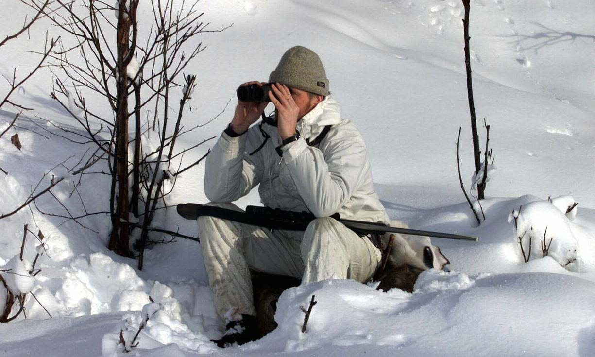 Over 11,000 Hunters Register For Licence To Shoot 16 Wolves In Norway Bjorn SigurdsonEPA