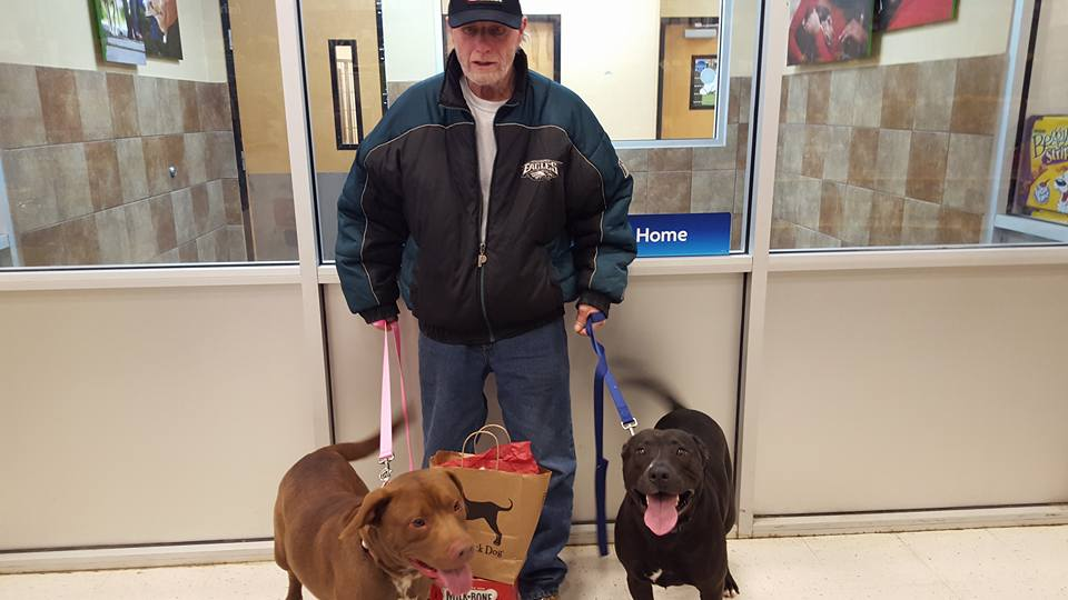Veteran Has Dogs Returned Thanks To An Act Of Christmas Generosity Lindsay Carrothers