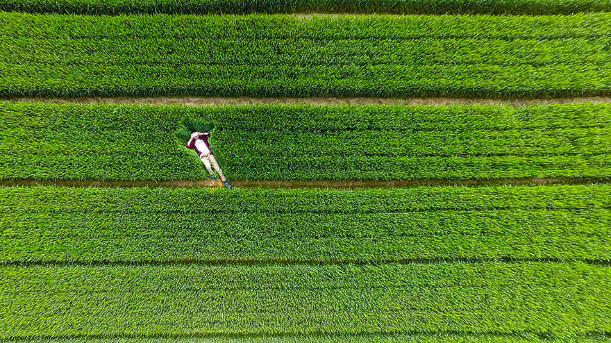 Its Been The Year Of The Drone And These Amazing Photos Are Proof drone4