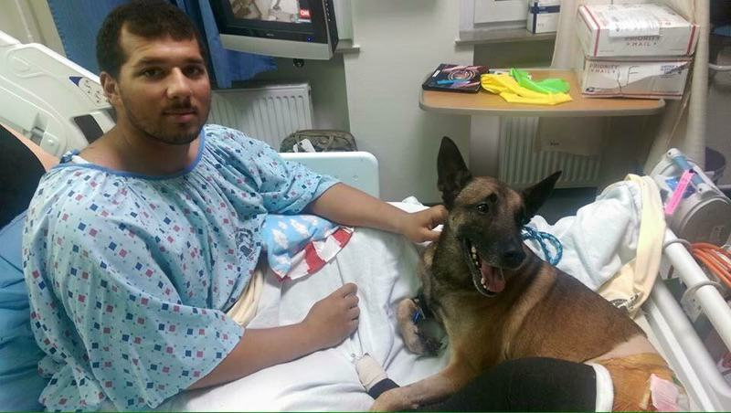 Soldier And His Dog Injured By Bomb Treated Side By Side In Hospital fb 1