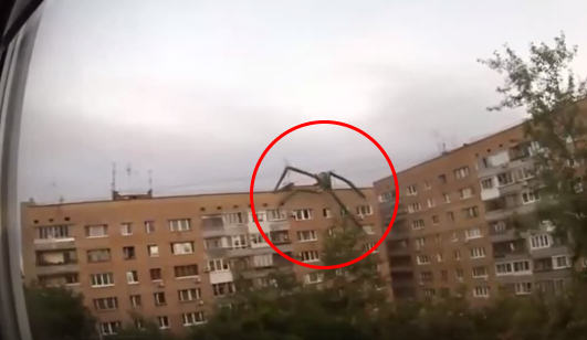 Five Eerily Convincing Videos Of Supposed Paranormal Activity photoshop monster alien spider captured on camera