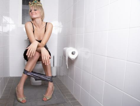 What Reddit Taught Us In 2015 toilet mishaps woman falls off seat