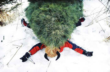 Ten Weird Things You Didnt Know About Christmas xmas accident