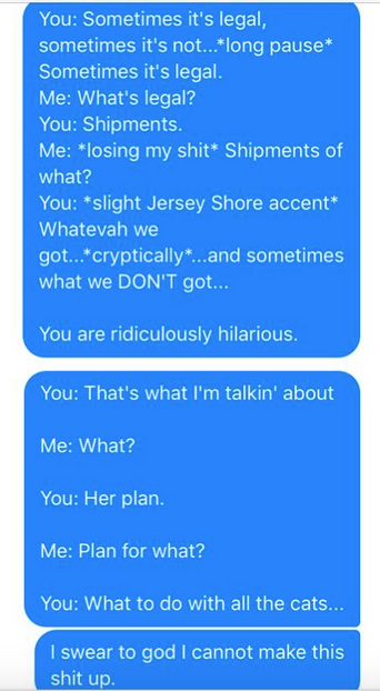 Wife Sends Hilarious Messages To Husband Quoting His Sleep Talk Screen Shot 2016 01 05 at 20.27.30