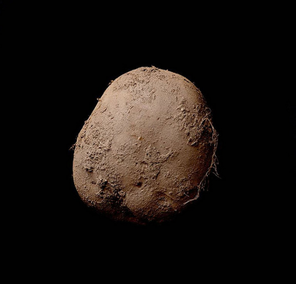 Photographer Sells Photo Of A Potato For A Whopping £750,000 Screen Shot 2016 01 24 at 17.10.53