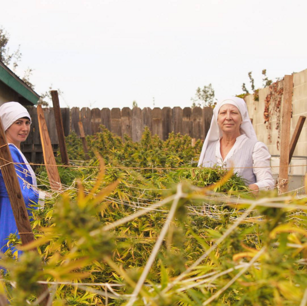 These Cannabis Growing Nuns Are Trying To Legalise Weed Screen Shot 2016 01 28 at 13.12.59