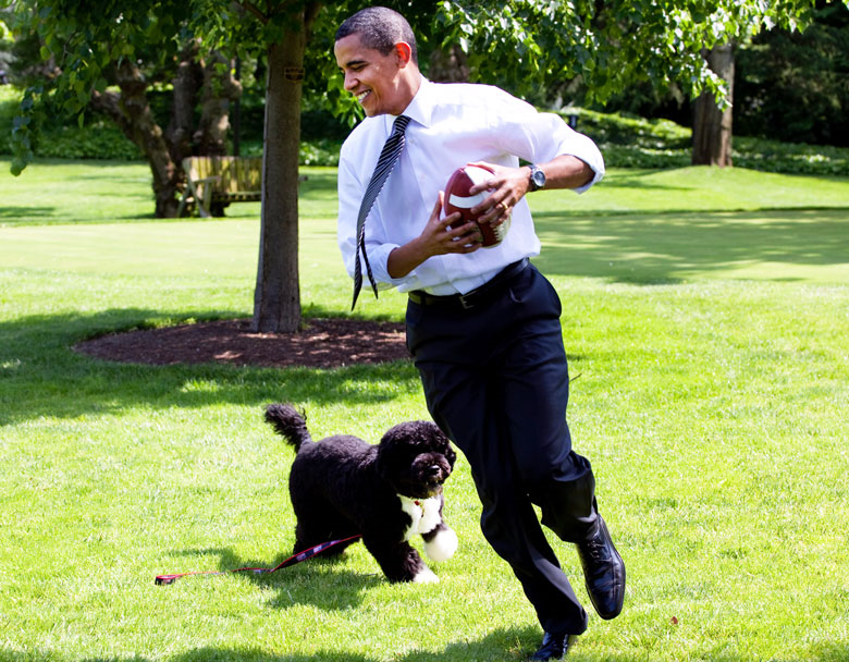 This Guy Probably Regrets Allegedly Trying To Kidnap President Obamas Dog bo