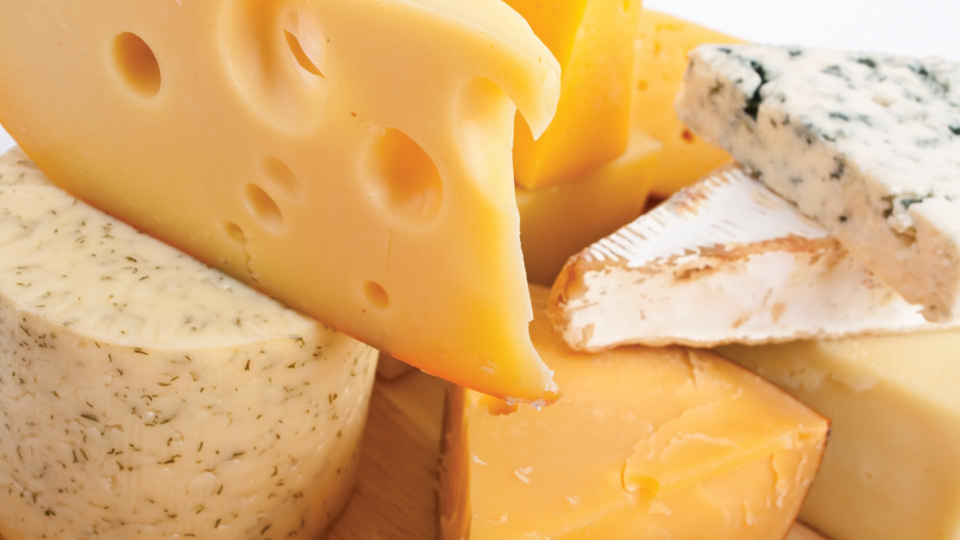 Science Gives Us Another Reason To Love Cheese   It Kills Cancer Cells cheese1