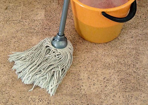 Man Arrested For Using Wife As Human Mop After Fight Over Sandwich mop bucket sg0vym 1