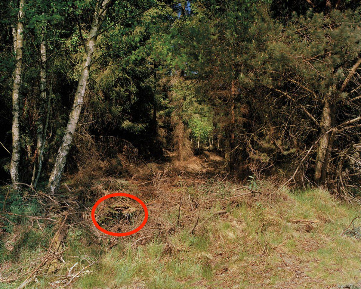 Can You See The Camouflaged German Sniper In These Photographs? sniper10