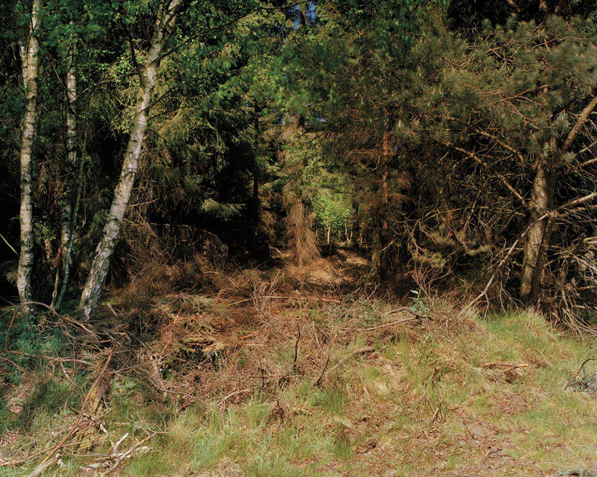 Can You See The Camouflaged German Sniper In These Photographs? sniper9
