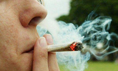 It Turns Out It Could Be Cigarettes, Not Cannabis, Thats Lowering Your IQ stoned5