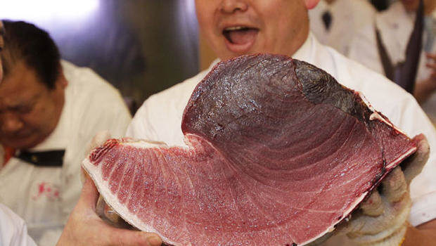 It Turns Out Endangered Bluefin Tuna Goes For A F*cking Ridiculous Price tuna3
