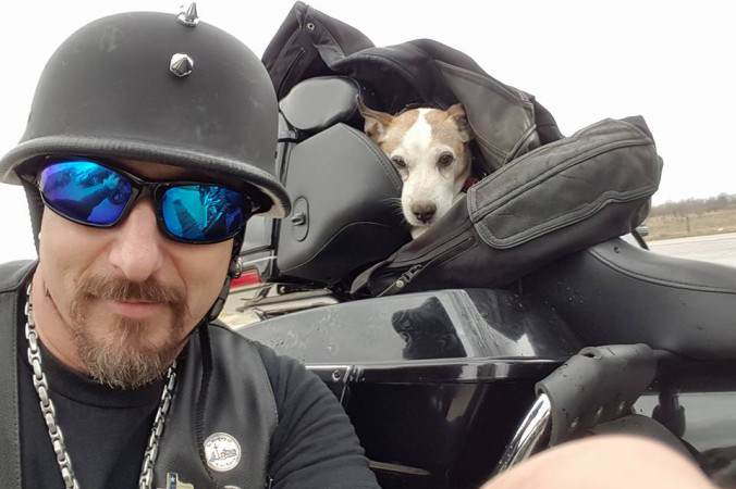 Biker Rescues Pup Left For Dead On Highway, Makes Him 'Co Pilot' 012301230aaz 676x450