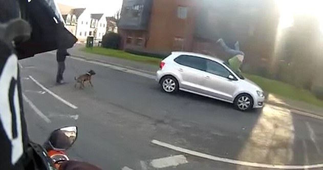 Driver Runs Down Pedestrian Crossing Street, But Whos In The Wrong? 31790A2F00000578 0 image a 37 1456222871060