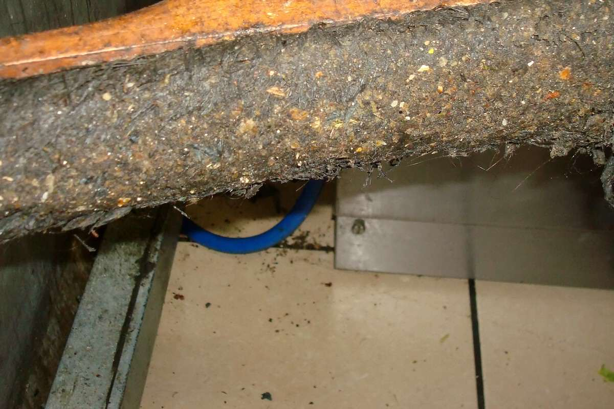 Fried Chicken Shop Closes After Human Poo Found Smeared On Walls NTI CHICKEN SHOP FILTH 02 1200x800