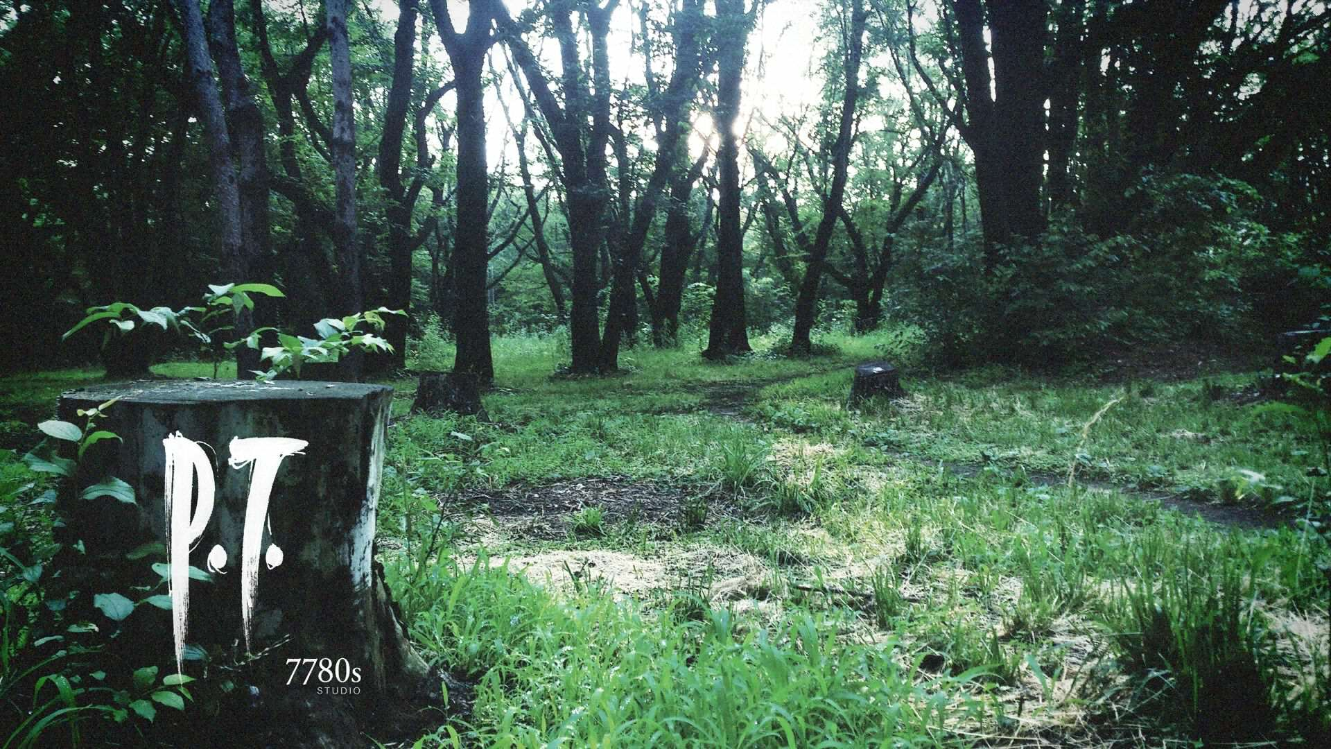 The Legacy Of P.T.   How One Cancelled Game Impacted The Horror Genre P T  20140815170332.0