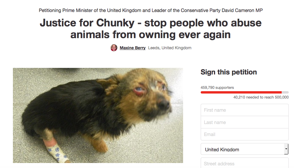 Over 450,000 People Sign Petition Calling For Animal Cruelty Register Screen Shot 2016 02 20 at 19.15.52