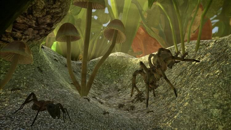 Crowdfunded Ant Simulator Cancelled After Team Spends Money On Strippers And Booze bPJoAduF9gQM.878x0.Z Z96KYq