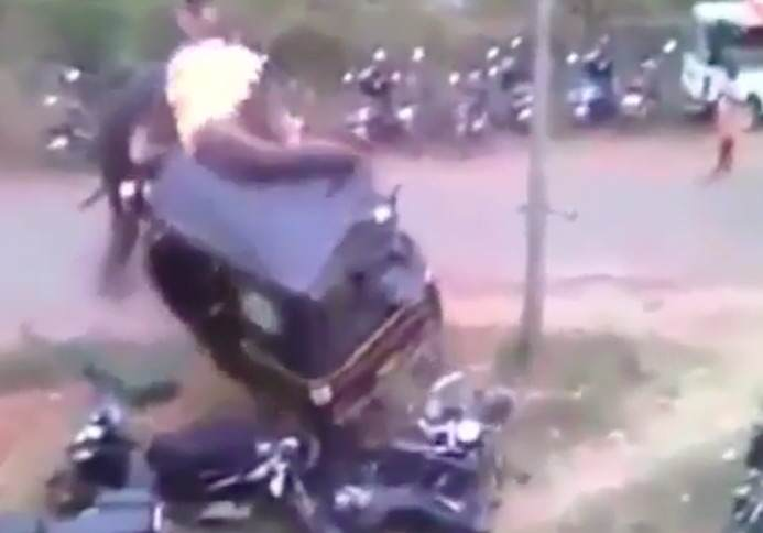 Angry Elephant Smashes Up Vehicles During Raging Rampage elephant2 1