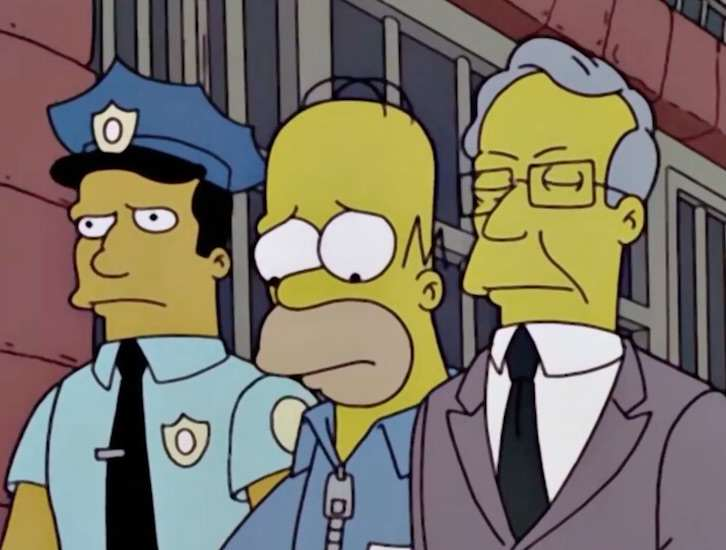 This Simpsons Version Of Making A Murderer Is Perfect homer1