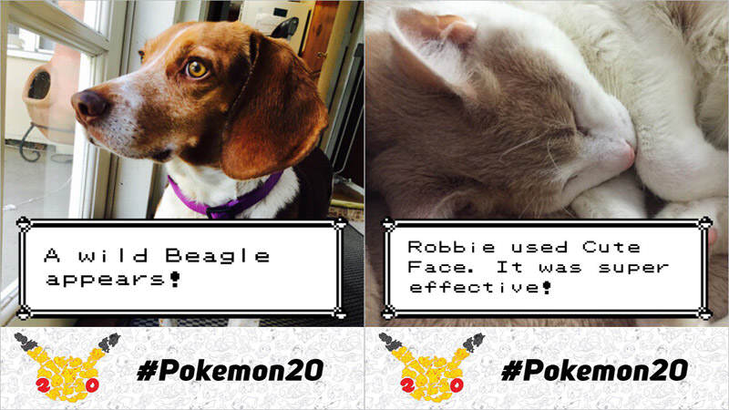 Official Pokémon Photo App Released, Gets Weird Really Quickly pokemon photo booth app ios