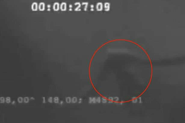 Creepy Video Of Mysterious Human Blubber Monster Emerges Online Internet conspiracy theorists move to debunk footage of mythical Ningen sea creature
