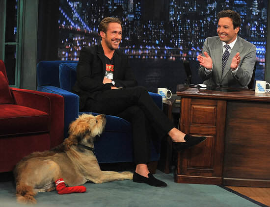 Turns Out Ryan Gosling Is A Real Life Superhero Ryan Gosling Pictures His Dog Jimmy Fallon