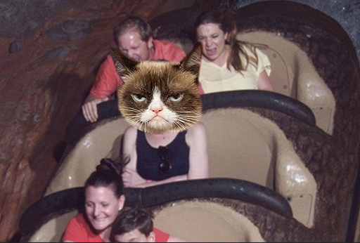 Woman From Angry Splash Mountain Meme Speaks Out Screen Shot 2016 03 11 at 16.13.59