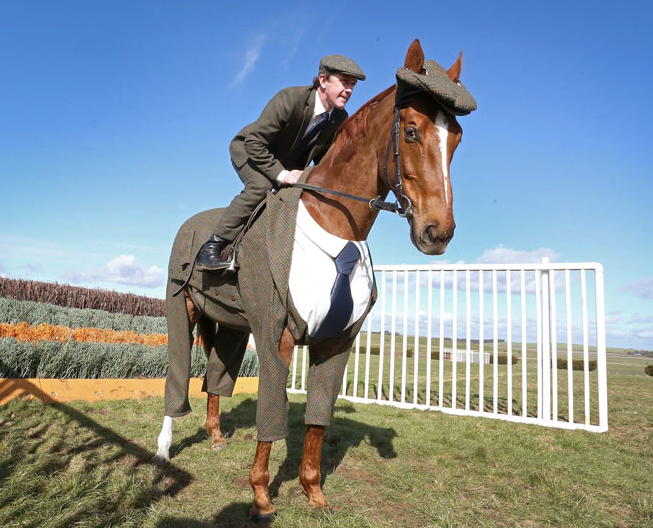 Horse Gets Tailored Suit, Looks More Dapper Than You Screen Shot 2016 03 15 at 17.46.06