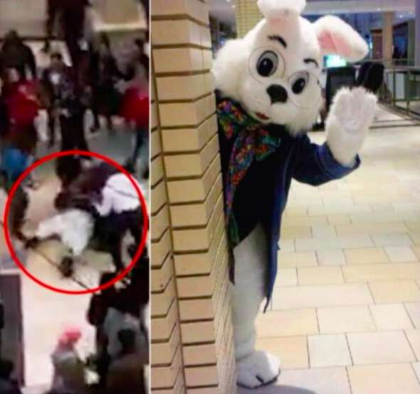 Video Shows Brutal Brawl Between Easter Bunny And Shoppers bunny1