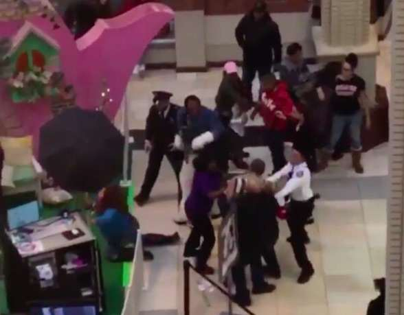 Video Shows Brutal Brawl Between Easter Bunny And Shoppers bunny2