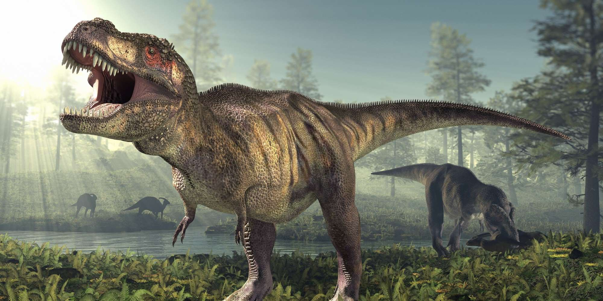 This Newly Discovered Dinosaur Gives Us Insight Into Origins Of T Rex dino44