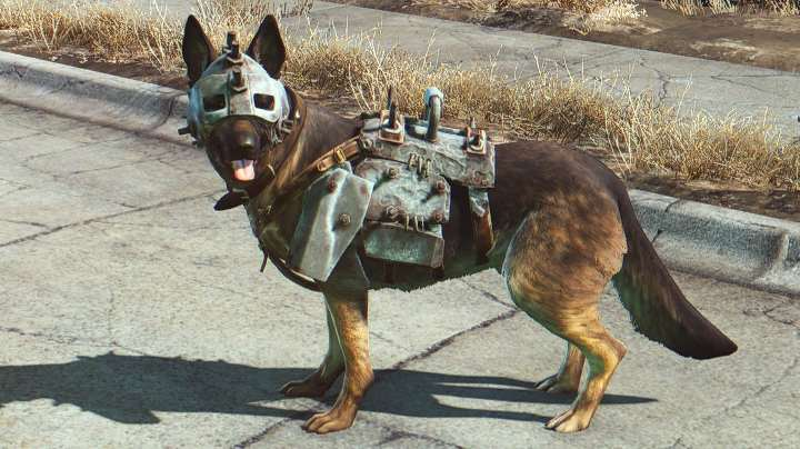 New Fallout 4 Mod Lets You Play As Dogmeat dogmeat dog armor