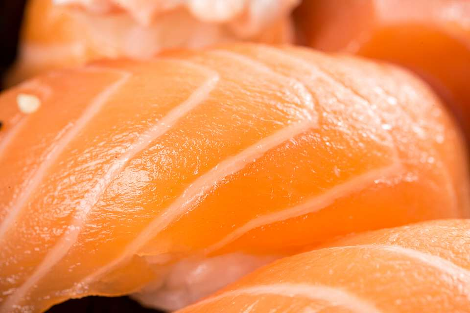 Salmon Found To Contain High Taces Of Cocaine, Prozac And 78 Other Drugs pixabay 1