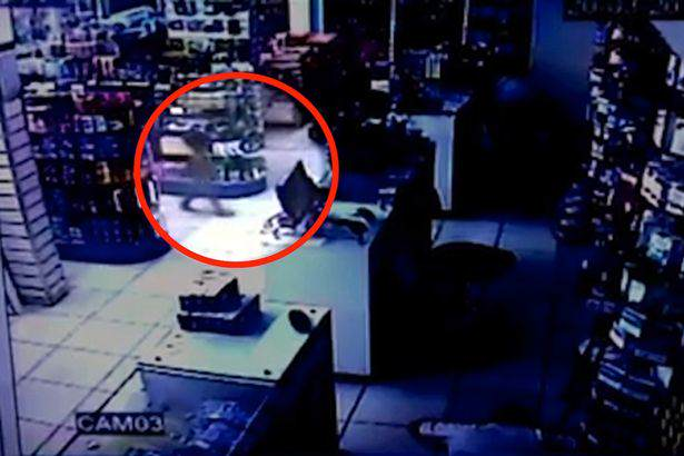 Terrifying Moment Toddler Wanders Into Middle Of Armed Robbery robber1