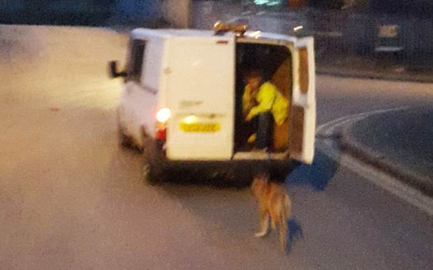 Do You Know These Absolute Bastards Who Dragged A Dog Behind A Van? rspca1